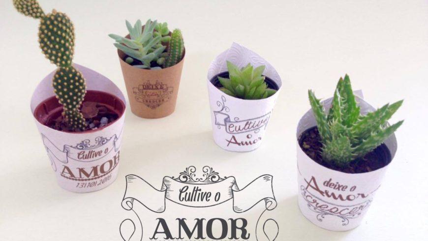 Plantinhas Suculentas, ótima ideia de Lembrancinha