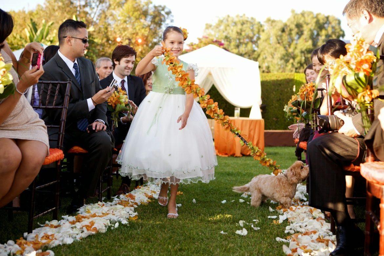 Levando seu melhor amigo para o Casamento